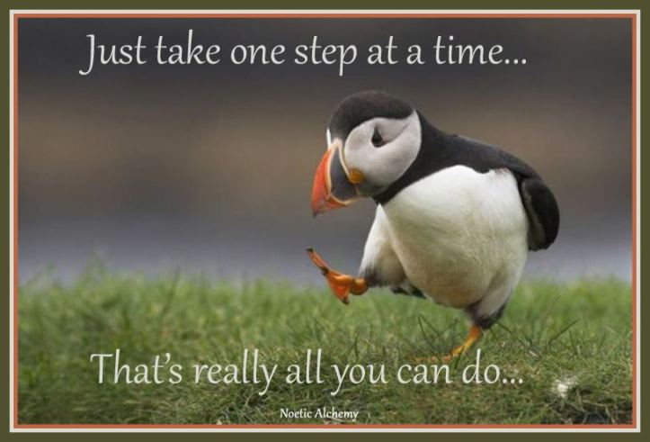 one-step-at-a-time